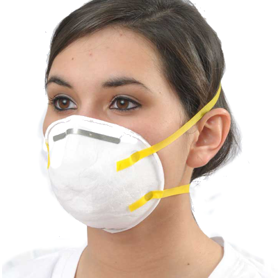 Deluxe N95 Disposable Dust and Mist Respirator